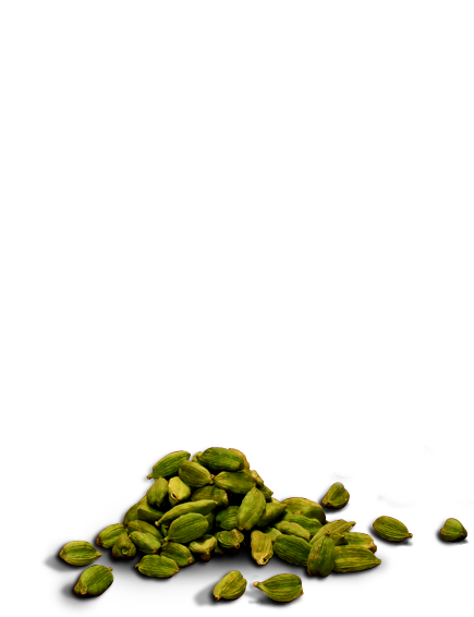 Background cardamom
